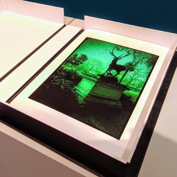 8 fotografias, pigmento mineral sobre papel Rag Photographique 308g. 24,5x34,5cm [RGO034]