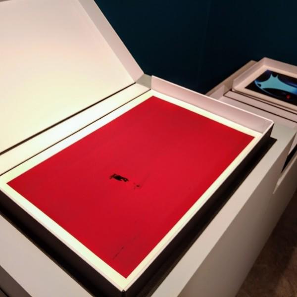 8 fotografias, pigmento mineral sobre papel Rag Photographique 308g. 48,5x33,5cm [RGO036]
